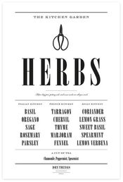 Dry Studios juliste Kitchen Herbs 50x70cm